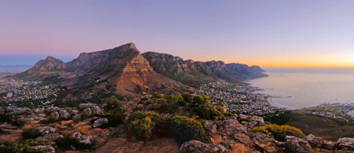 Table-Mountain national park