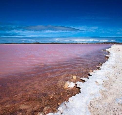 hillier lake australia