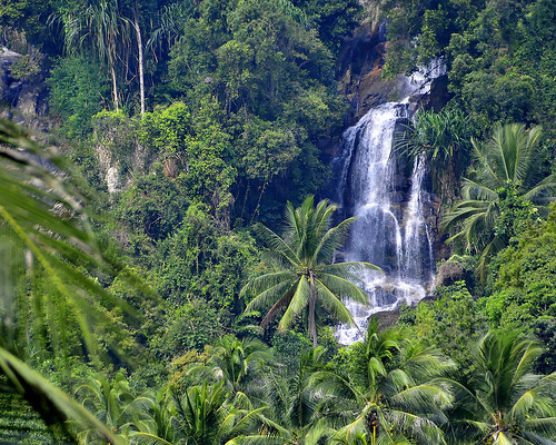 tropical_rainforest-waterfalls